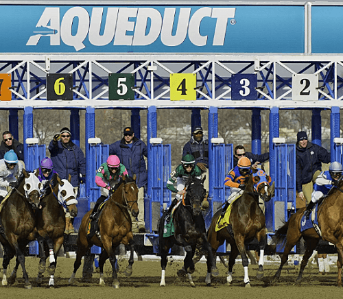 Aqueduct race track betting guide 2019