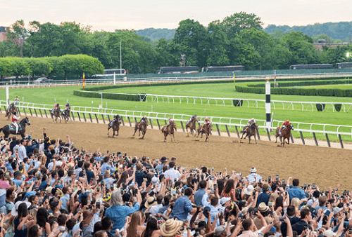 Belmont Betting guide 2019