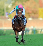 Breeders Cup Turf Guide Canada